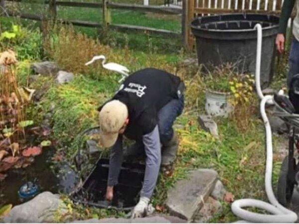 Premier Ponds team member doing a check for leaks